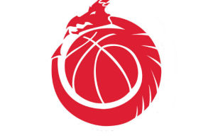 basketball wales logo
